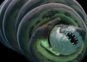 """Titanoboa """"la serpiente mas grande del mundo vivió en colombia"""""""